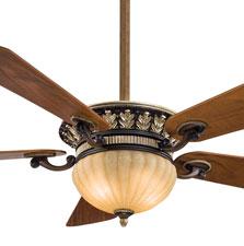 Fan Image